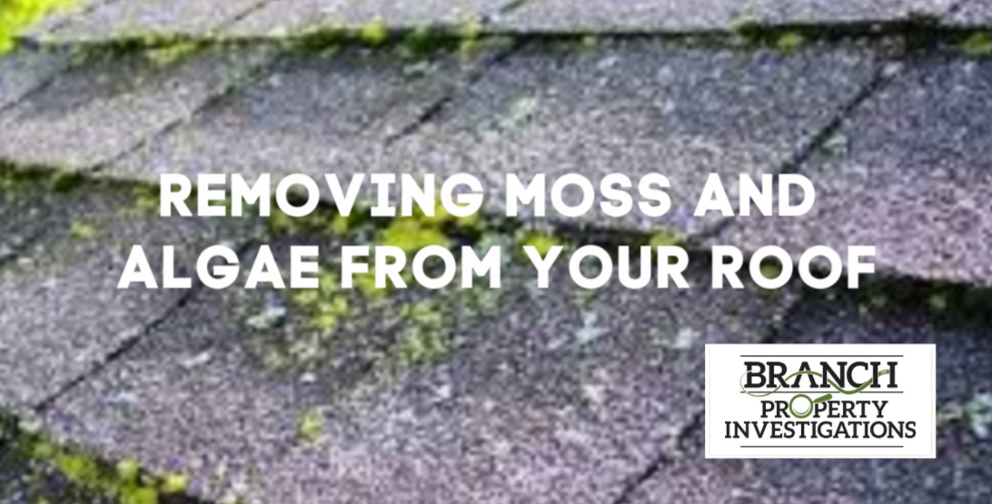 Removing Moss and Algae from Roof