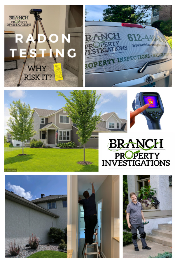 Home Inspection, Radon Testing and Moisture Intrusion