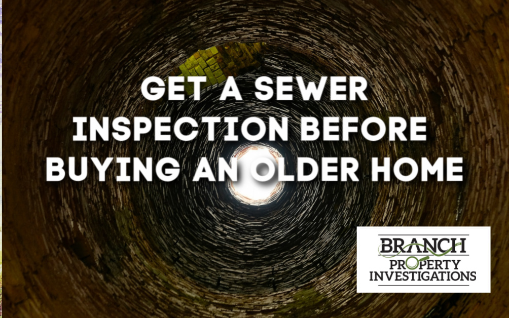 sewer line inspection