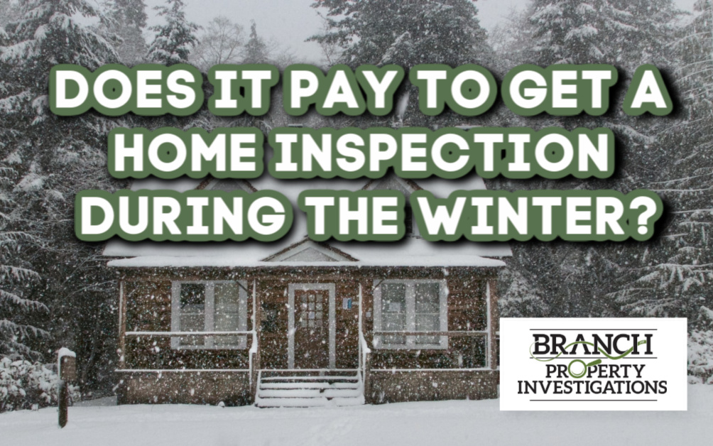 winter home inspection